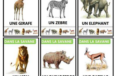 Jeu des 7 familles sur les animaux de la savane , à imprimer gratuitement !