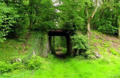 Pont 9_laie de Chavigny_ancienne voie ferrée.