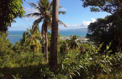 Promenade sur Petite-Terre