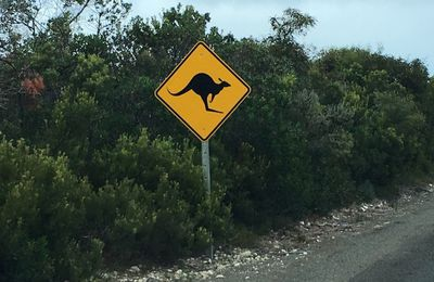 Wildlife roadsigns australiens ou Attention animal sauvage