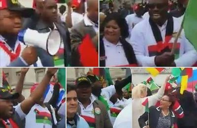 IPOB members storm UN office to protest against Buhari