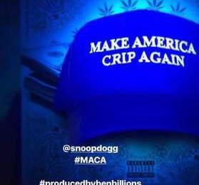 Read the content of Snoop Dogg New Song on Trump