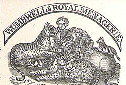 Juin 1900, la ménagerie Bostock et Wombwell se donne en spectacle à Moulins