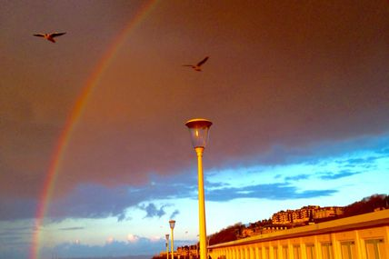 COLLECTION D'ARC-EN-CIEL (photos et texte) #2015 #occupylaplage