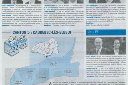 Départementales 2015 - canton de Caudebec : article Paris-Normandie