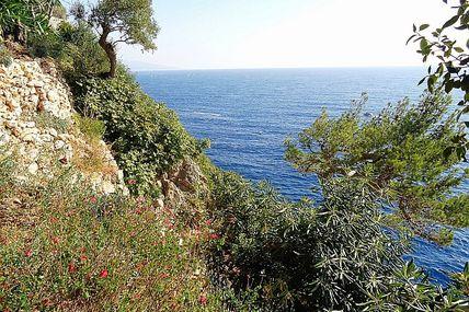 Monaco : le jardin Saint-Martin