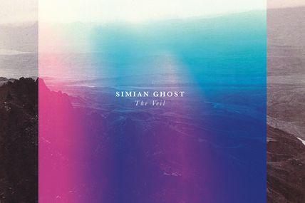 On danse avec Simian Ghost sur Never Really Knew