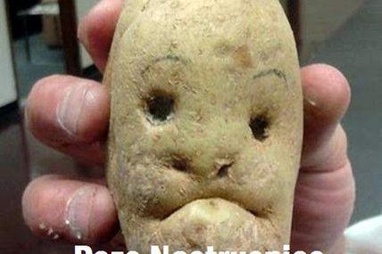 Cartoful trist...