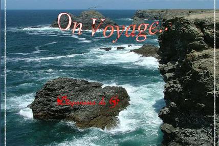 On Voyage