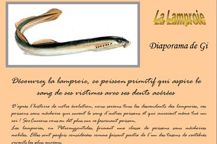 La Lamproie