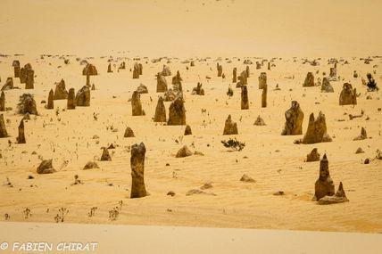 Le désert des pinacles