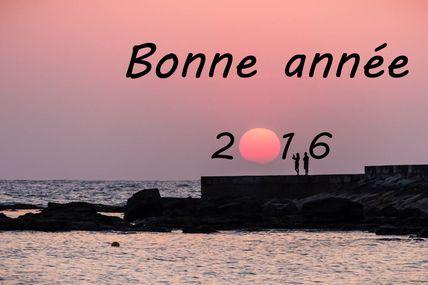Vœux pour 2016