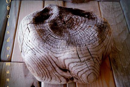 Joli morceau de bois flotté naturel