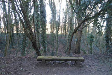 Le Bois Boissel
