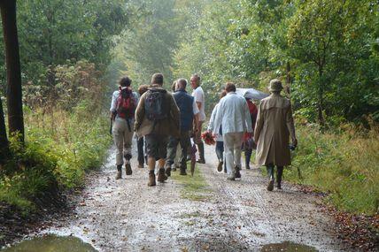 Balade mensuelle - Commission Ornithologique de Watermael-Boitsfort ce 5 juin