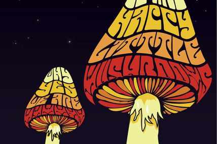One track a day: UNDER YOUR MUSHROOM by The Stems