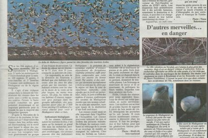 Oiseaux de Madagascar, une merveille menacée - Les Nouvelles, 28 juillet 2006
