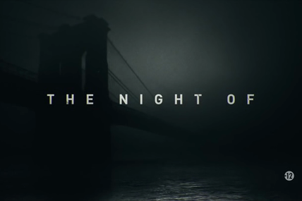 The Night Of - Saison 1
