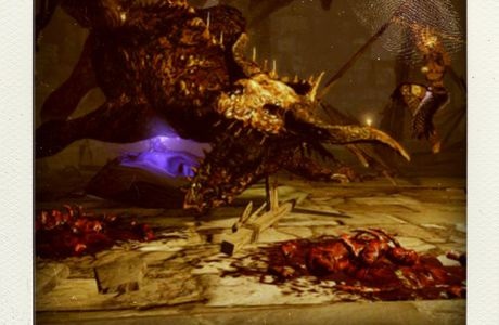 La vignette : Dragon Dogma Dark Arisen