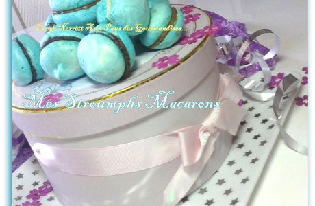 """Mes STROUMPHS""""Macarons"""