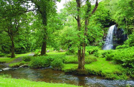Goûtez, fondez aux saveurs et douceurs du Sud-Est Irlandais