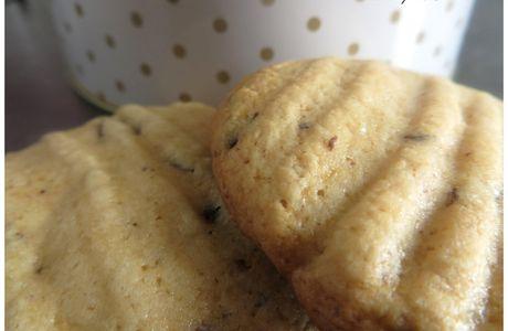 Cookies à la pâte de Petit-Beurre et aux pépites de chocolat