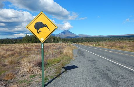 La Gazette des Kiwis : Tongariro National Park