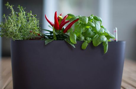 Self-watering Modern Outdoor Planters: an alternative way to water your plants
