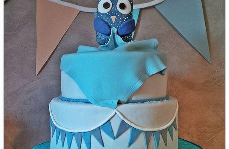 Gâteau très chouette pour le baptême de Marin