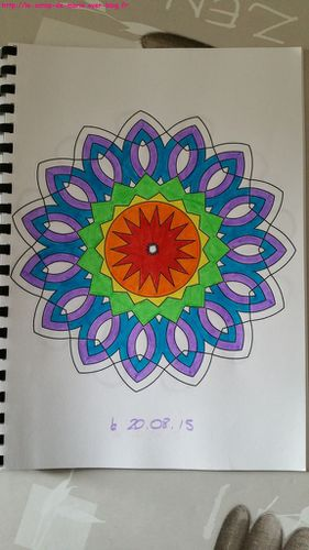 Coloriage Adulte Avis.Art Therapie Ou Coloriage Adultes Les Livres De Marie
