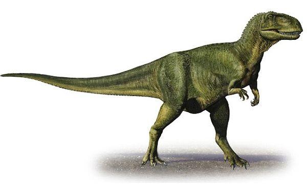 Une énorme empreinte de dinosaure découverte en Bolivie