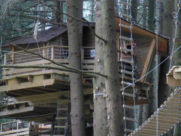 Observatoire national de la fréquentation des cabanes dans les arbres