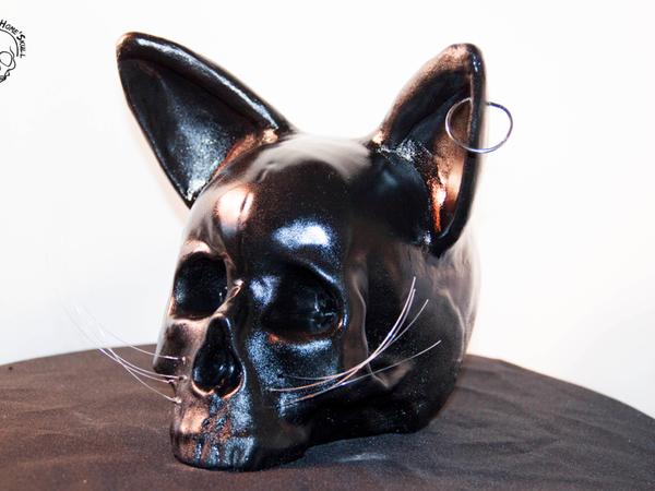 Tête de mort , vanité, Skull Black Cat'