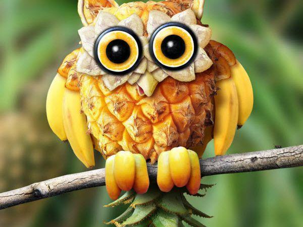 Sculpture sur fruits et l gumes web buzzer - Sculpture sur fruit ...