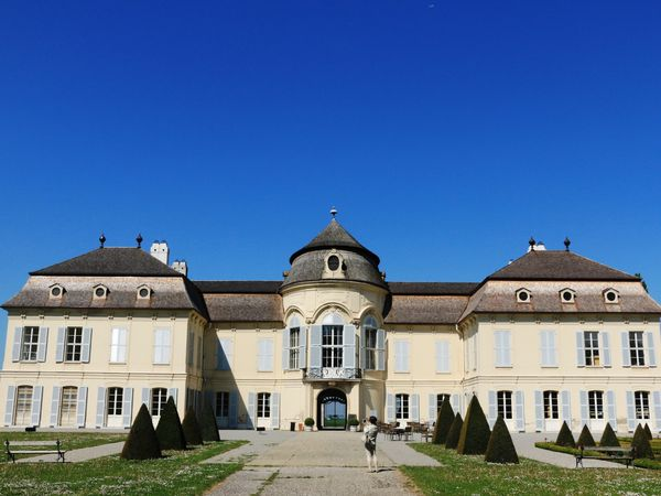 Chateau de NIEDERWEIDEN et la production locale d'asperges.