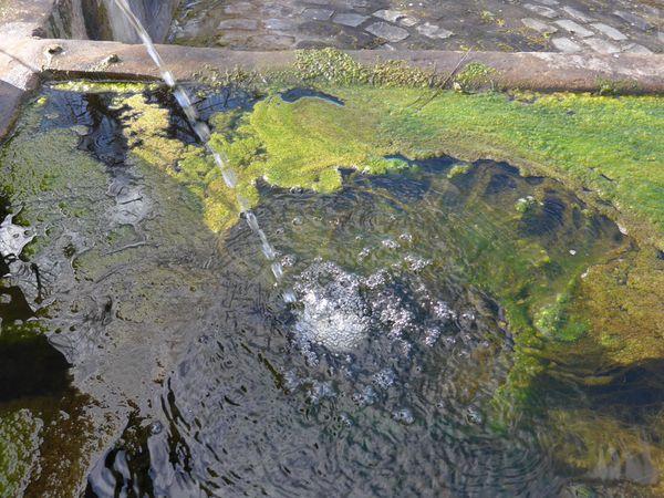 La fontaine à Obélisque, la deuxième à Marmoutier