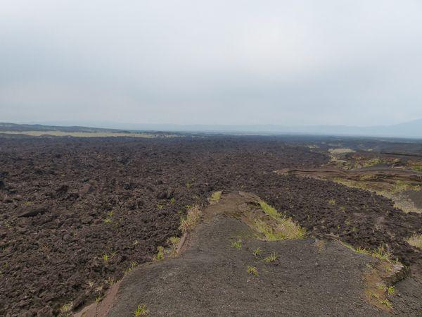 Ancienne coulée de lave, fougères géantes et camp de base du Marum !!