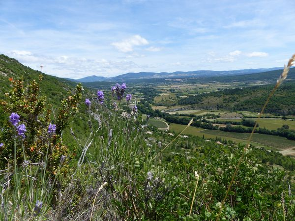 Les Gorges de la Nesque, depuis Monieux.