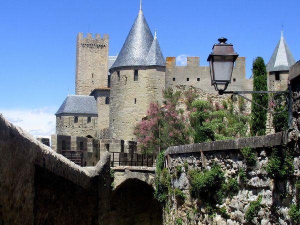 Carcassonne ((5)