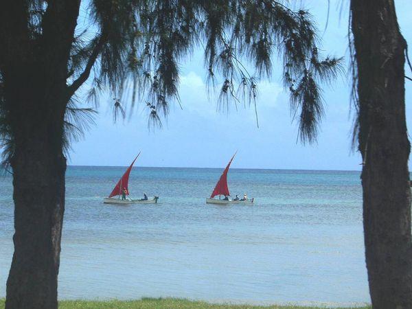 241 - L'île Rodrigues 07, Anse Mourouk, la pêche, pirogues rodriguaises, le lagon, ourites, photos by GeoMar,