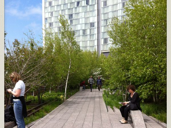 Le long de la High Line, verdure et sculptures contemporaines.