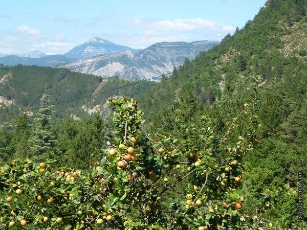 Vue sur la vallée et les montagnes