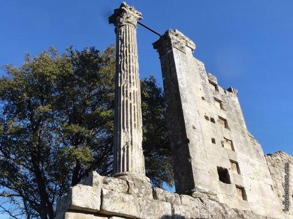 La colonne cannelée et son chapiteau et le pilastre carré.