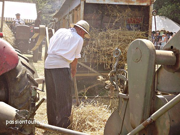 Fête à l'ancienne n° 9 ( travaux des champs )