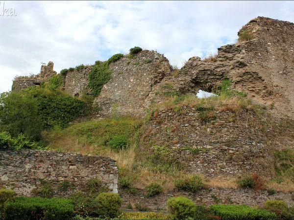 CHAMPTOCÉ sur LOIRE   (Le château de Barbe Bleu)