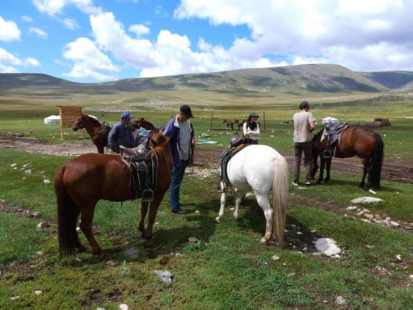 Horse Riding in the 8 lakes region