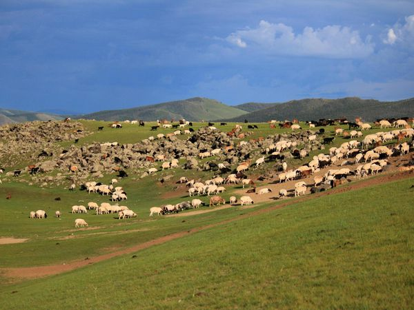 Mongolian pieces of life in the Orkhon Valley - Part 2