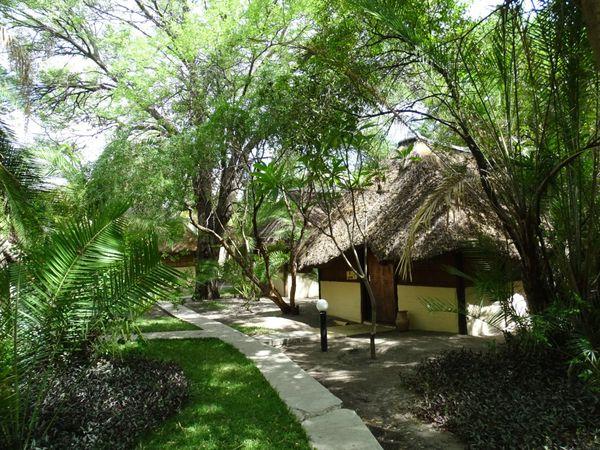 Masambala Island Lodge...entouré d'eau à la saison des pluie,belle étape dans la Caprivi