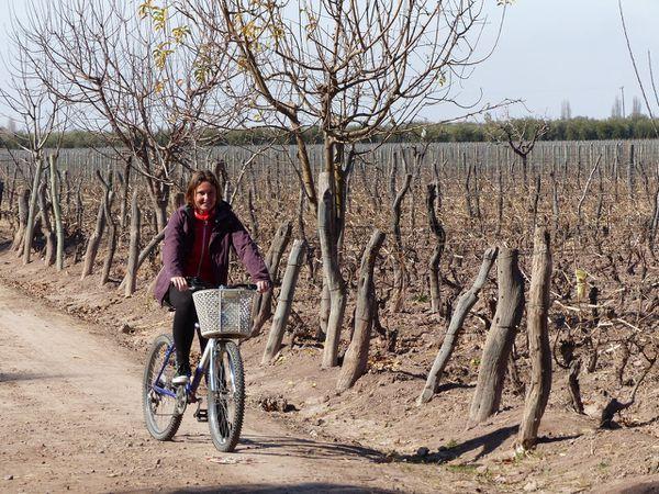 Mendoza et Cordoba : Du vin, du stop impossible et… San Martin !!!