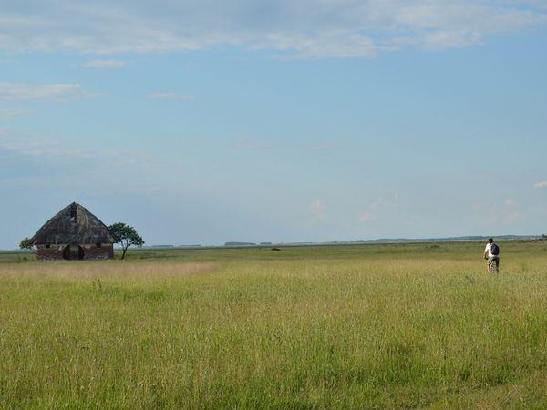 Hortobagyi : paysages...